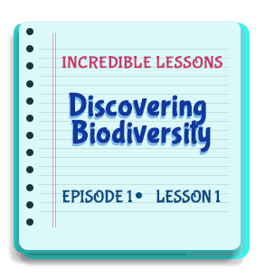 Discovering Biodiversity Episode 1 Lesson 1