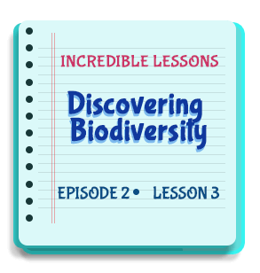 Discovering Biodiversity Episode 2 Lesson 3