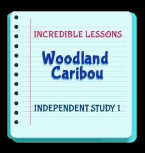 Woodland Caribou Independent Study 1
