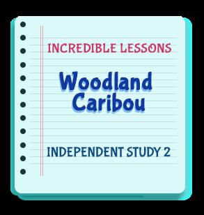 Woodland Caribou Independent Study 2